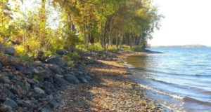 west-shore-cabins-shoreline (1)