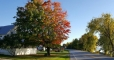 West-Shore-Cabins-Colors-of-Fall